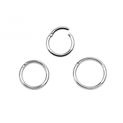 Hinged Segment Ring Nose Helix Tragus Piercing Bhrs Ha